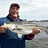 "landed a keeper 29"" on opening day NYS Striper season"