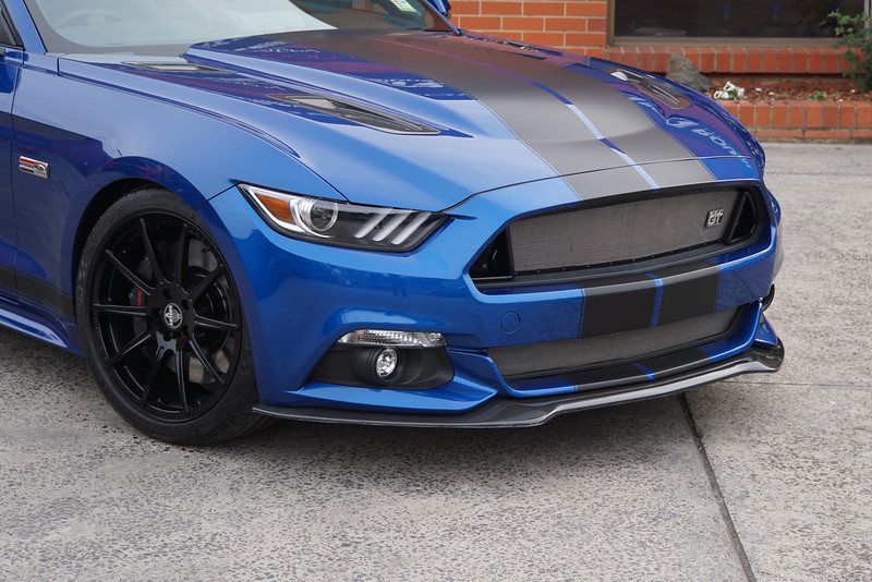 SHELBY GT CSM:17SGT0704