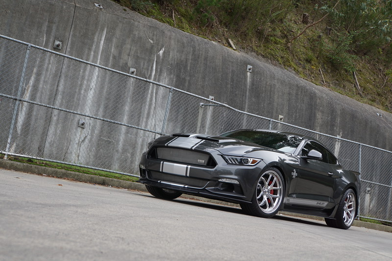 SHELBY 50TH ANNIVERSARY SS CSM:17SSX6759
