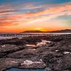 shell beach tidepools-6191