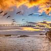 shell beach-3069-