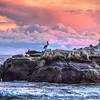 shell beach sunset 2197-