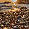 shell beach 8842