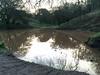 Bramhall Pond