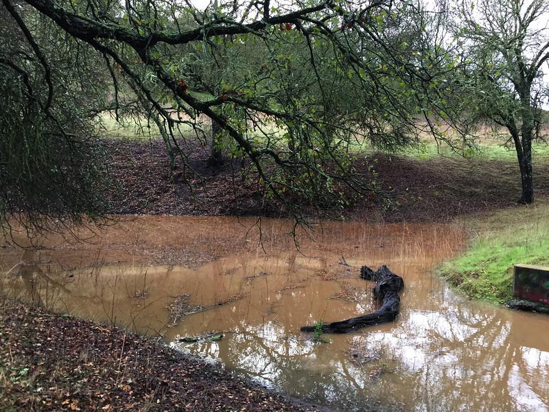 Coyote Pond 121214