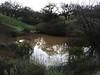 Upper Twin Pond 122414