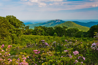View of Old Rag Mountain, Skyline Drive, Shenandoah National Park, Virginia