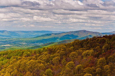 Early spring view of the Appalachians from Skyline Drive in Shenandoah National Park, Virginia.