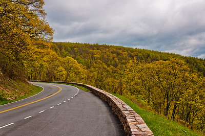Early spring colors on Skyline Drive in Shenandoah National Park, Virginia.