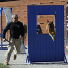 Sheriff K9 Trials : 1 gallery with 204 photos