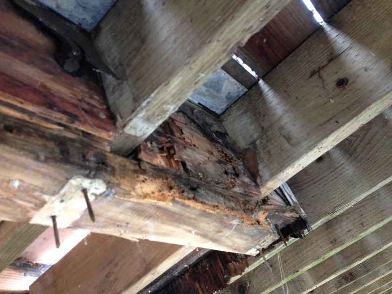 The support box for the chimney, built around the joists - the box is all wet and rotted.