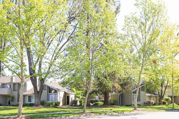 2280 Monitor Ct San Jose / Willow Glen