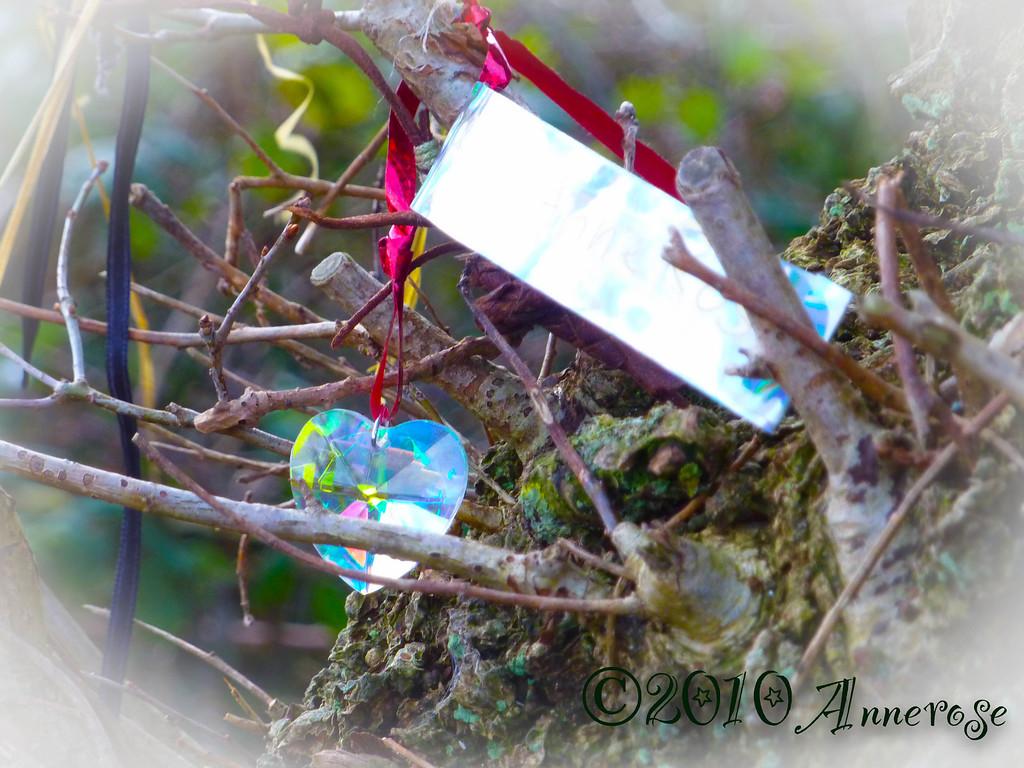 Prayers at the Holy trees