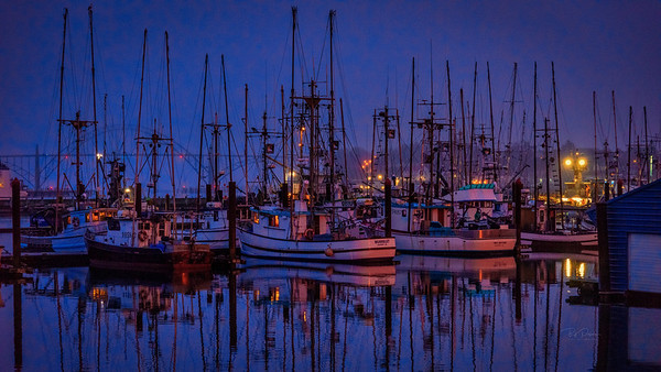 Harbor Dawn