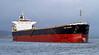 'CMB Sakura' Approaching East India Harbour - 6 January 2014