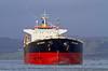 'CMB Sakura' Passing East India Harbour - 6 January 2014