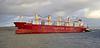 'Sentosa Bulker' Passing East India Harbour - 4 December 2013