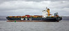 'MSC Santhya' off Greenock Esplanade - 13 January 2020