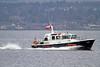 Pilot Cutter 'Toward' - Off Greenock Esplanade - 20 November 2011