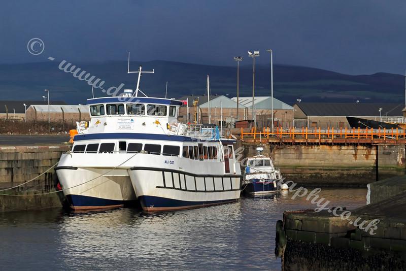 Ali Cat - James Watt Dock
