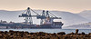 MSC Monica from James Watt Dock - 24 April 2021