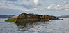 'MV Captayannis' wreck off Greenock - 8 October 2016