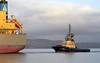 Mykali and Aglegarth - Off East India Harbour - 16 December 2012