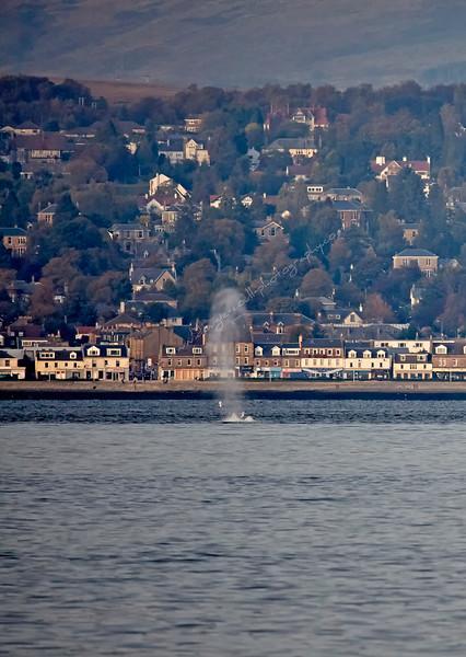 World War 2 Mine Detonation off Greenock Esplanade - 15 October 2015