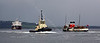 Busy River Clyde - 19 August 2013