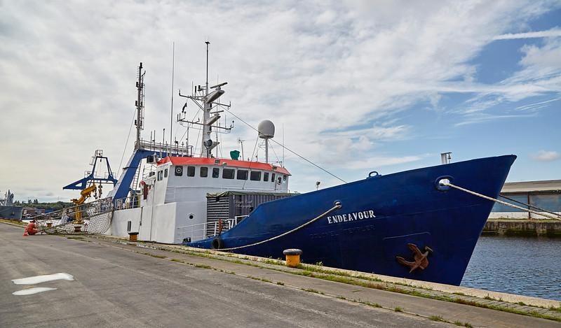 MV Endeavour at King George V Docks - 23 August 2017