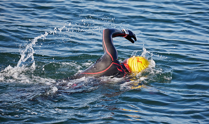 Swimmer off Greenock Esplanade - 13 May 2016