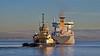 'Ternvag' Off East India Harbour - 22 November 2013