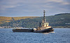 Seal Carr off Greenock - 2 August 2021