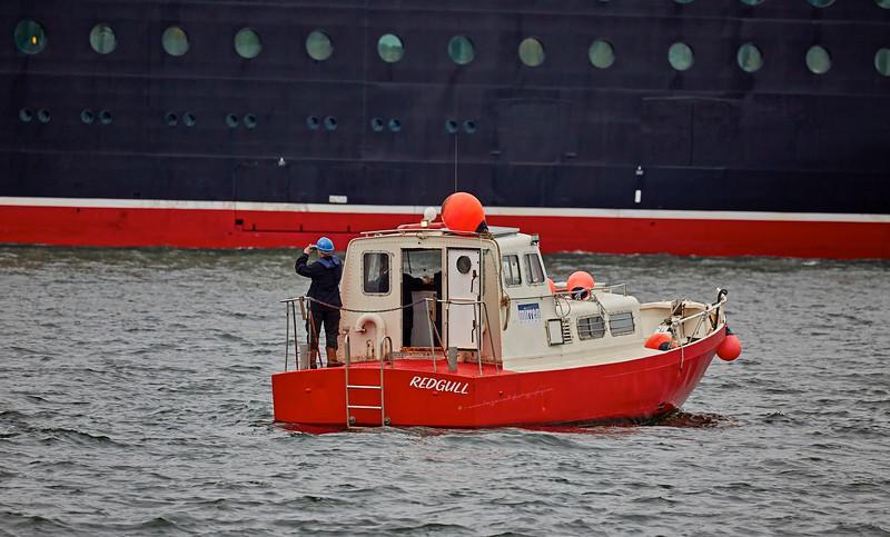 'Red Gull' off Greenock Esplanade - 11 June 2016