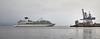 'Seabourn Quest' off Greenock Esplanade - 12 August 2016