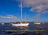 QE2 Flotilla
