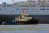 Svitzer Mallaig Assist in berthing the QE2