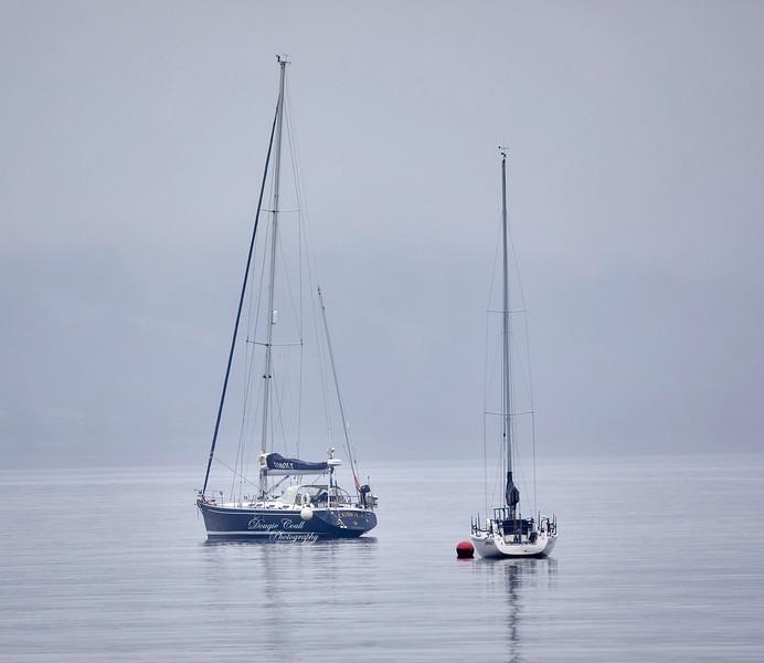Yachts Moored in Gareloch - 9 July 2019