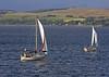 Yachts Heading Home