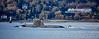 Astute Class RN Submarine off Cloch Lighthouse - 16 January 2017