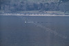 Trafalgar-Class Submarine at Periscope Depth - Loch Long - 26 March 2012