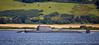 HMS Artful on trials off Kilcreggan - 1 September 2015