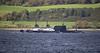 RN 'A' Class off Kilcreggan - 11 September 2019