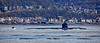US Navy Submarine off Kilcreggan - 21 April 2016
