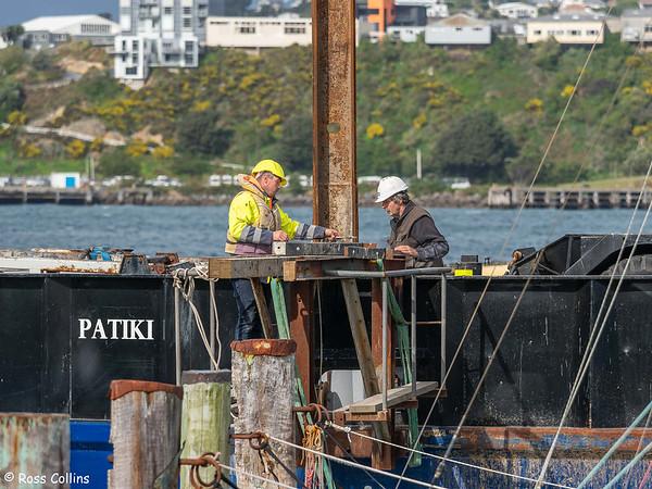 'Patiki' at the Evans Bay Marina, 12 September 2021