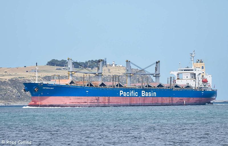 'Astoria Bay' arriving at Wellington, 4 January 2021