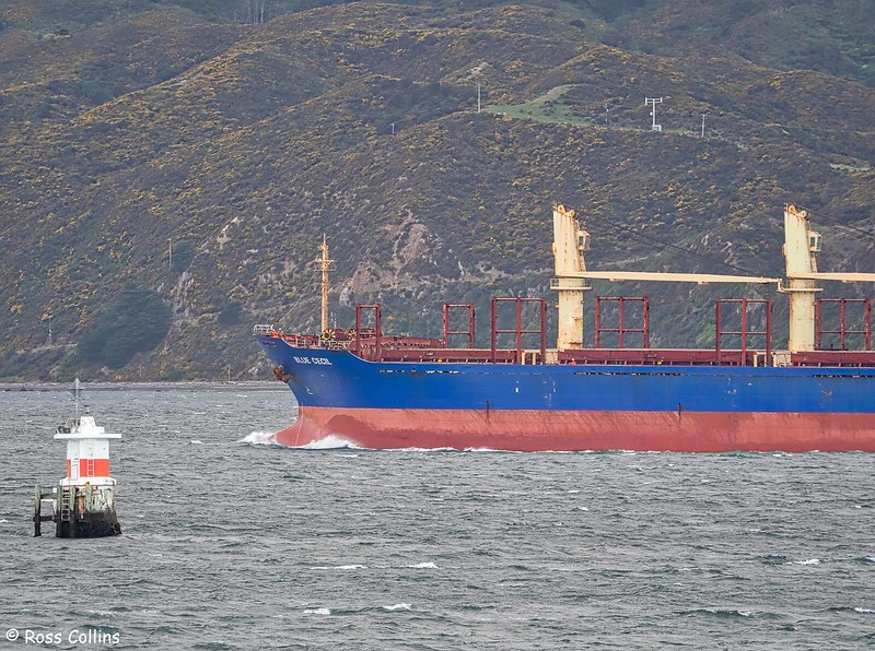 'Blue Cecil' arriving at Wellington, 21 May 2020