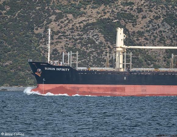 'Bunun Infinity' entering Wellington Harbour, 29 January 2020