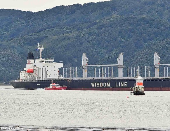 'Daiwan Leader' departing from Wellington, 1 June 2020