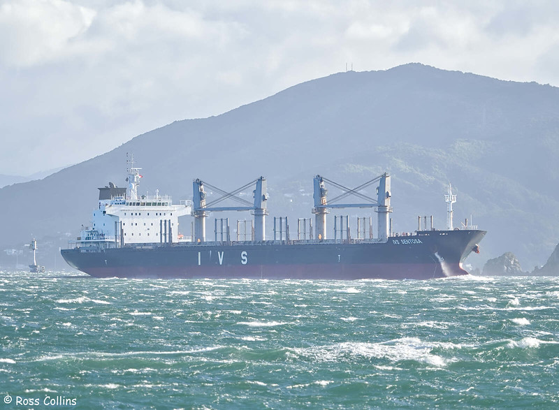 'IVS Sentosa' departing from Wellington, 14 November 2020